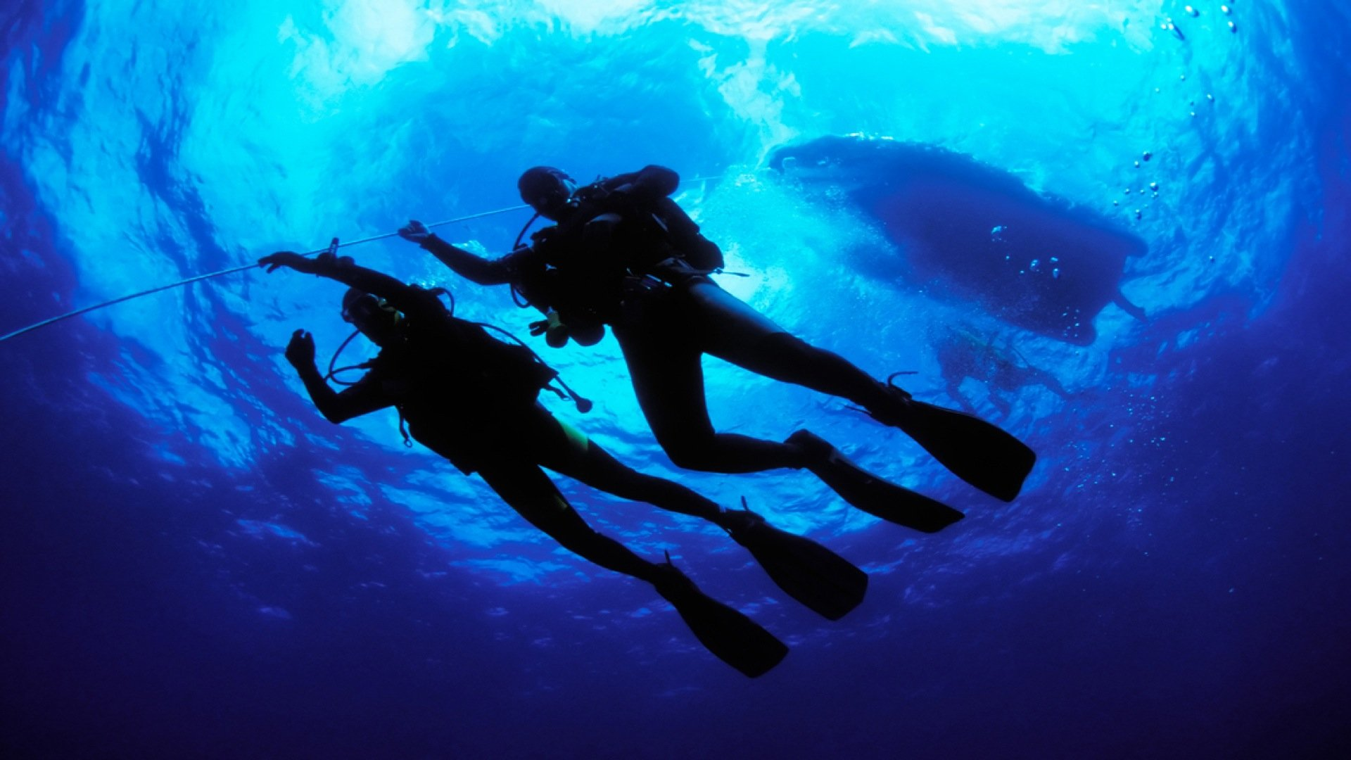 Scuba Diving in Kerala - Snorkeling and Water Sports in Kovalam